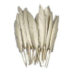 Dekoratyvinės plunksnos SEASONS & STYLE, 10 vnt.